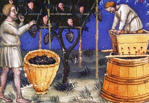 Вино делали еще 8000 лет назад