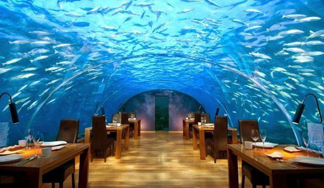 Подводный ресторан на Мальдивах находится на глубине 5 метров