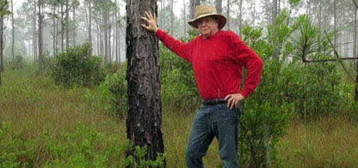 МС Дэвис высадил 8 млн деревьев во Флориде за свой счет