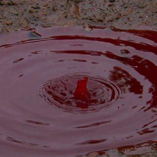 В июле 2012 года на индийский город Каннур пролился кровавый дождь