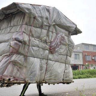 Китаец Лю Лингчао всегда дома – он носит свою мини-хижину на спине