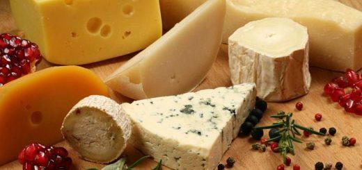Первый сыр начали делать более десяти тысяч лет назад